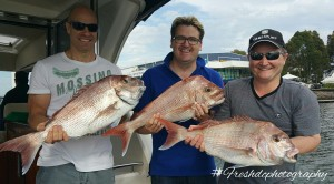 Snapper Fishing With Men